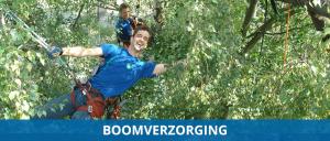 Boomverzorgers
